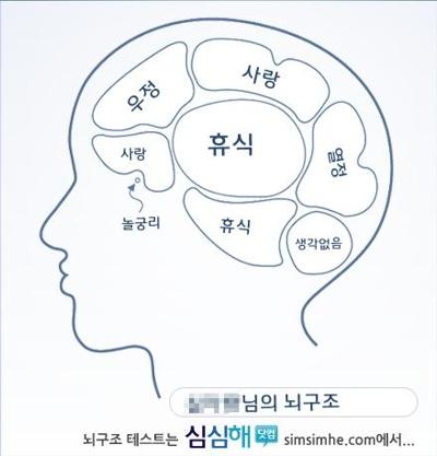 뇌구조 보기