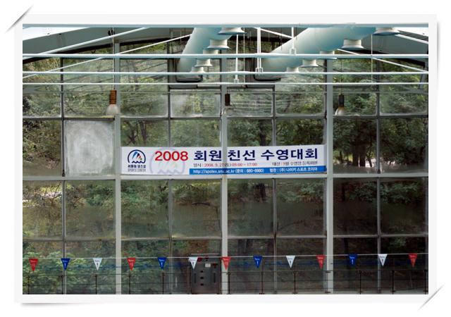 2008 포스코센터 수영대회