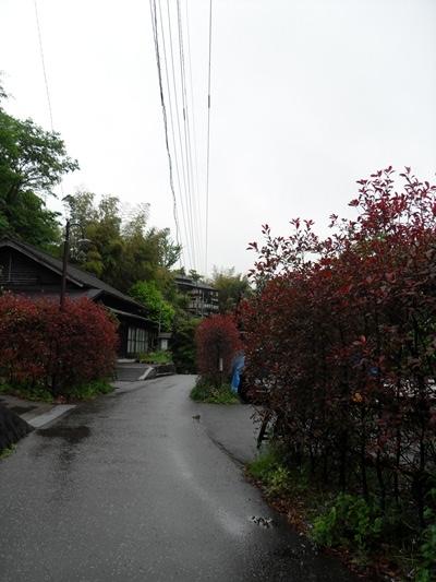 혼자 떠나는 북큐슈 온천여행 (30) 쿠로가와 풍경 2탄