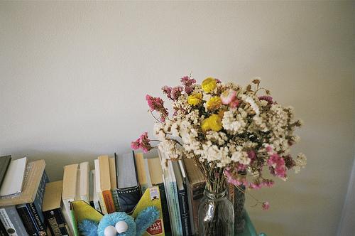 꽃 사진 02(image)
