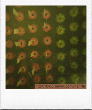 봉녕사 연꽃등