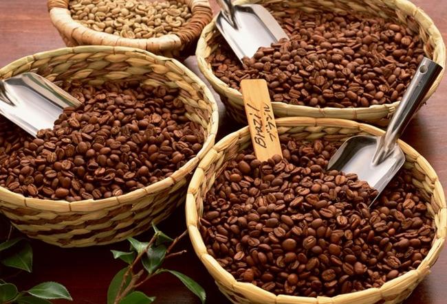 [커피원산지]커피원산지마다 다른 원두커피맛_..