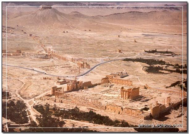Palmyra : 팔미라, Syria