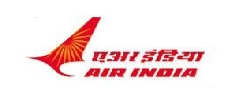 [DRAGON WINGS] Air India A330-300/Terminal w..