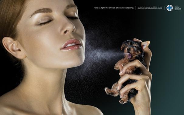 동물실험을 하는 회사/ 동물실험을 하지 않는 회사