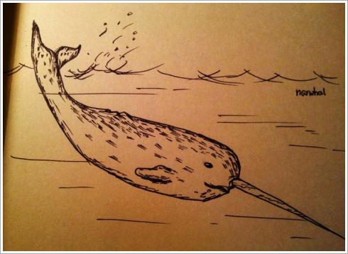 고래 크로키
