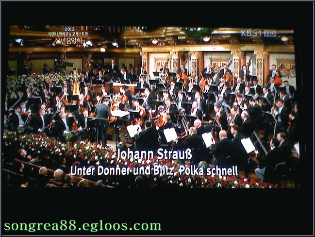 2012신년음악회(비엔나필하모닉오케스트라) TV..