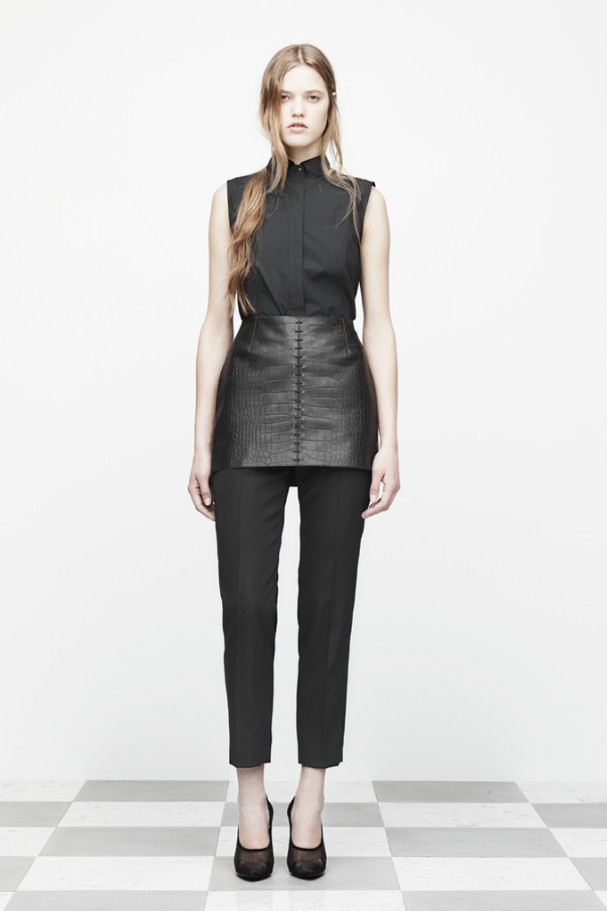 [New York] 2012 Pre-fall Collection Alexander..