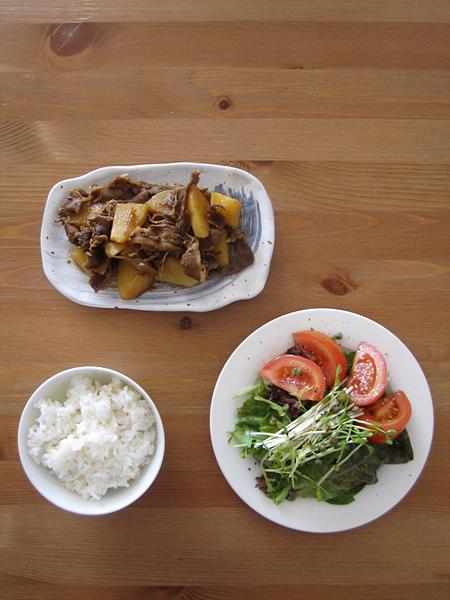 [생존요리] 아픈 날 혼자 점심 2 - 니꾸쟈가와 샐러드