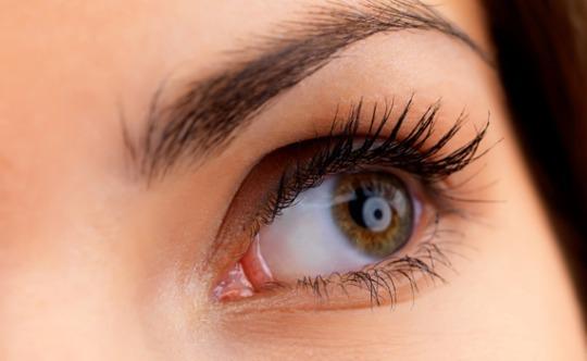 [생활건강] 눈 건강과 시력을 지키는 7가지 방법