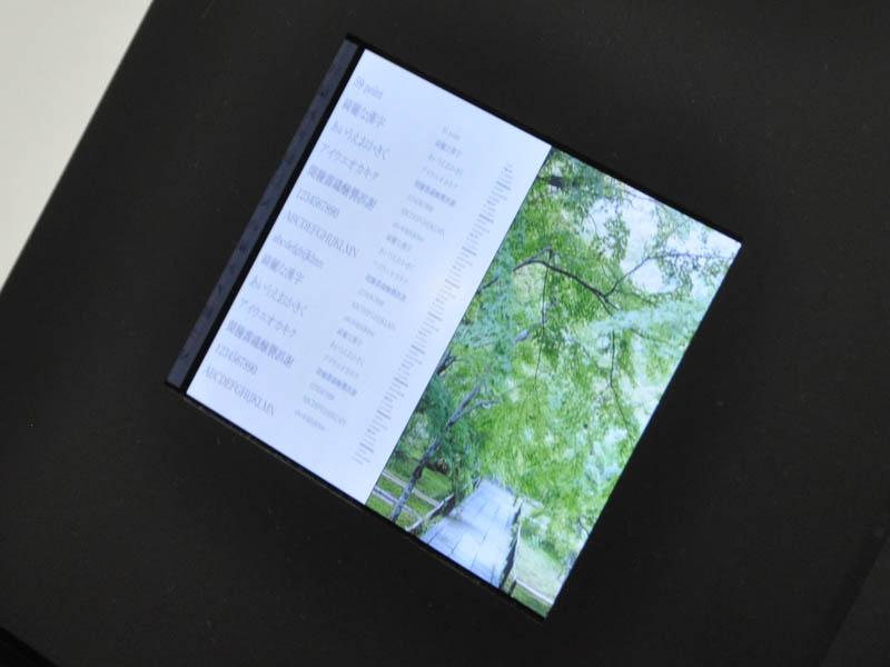 샤프, IGZO를 이용한 6.1인치 2560 × 1600 패널 발표!!!