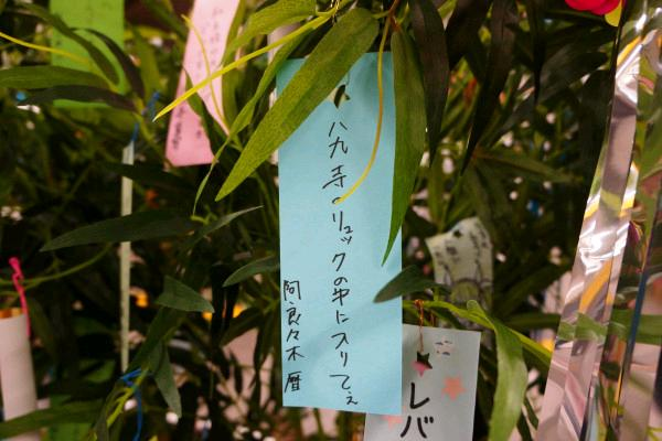 니시오 이신 축제 칠석 탄자쿠 전시 & 센죠가하라 ..