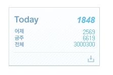 방문자수 300만