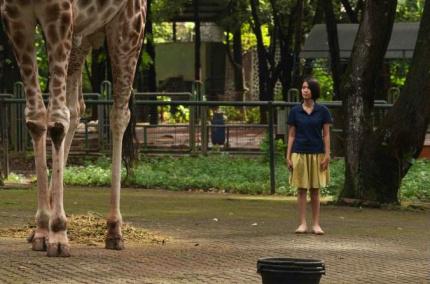 [2012 BIFF]<동물원에서 온 엽서> -생명의 스..